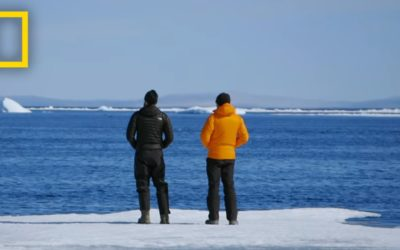 5 Things to Know About the Warming Arctic