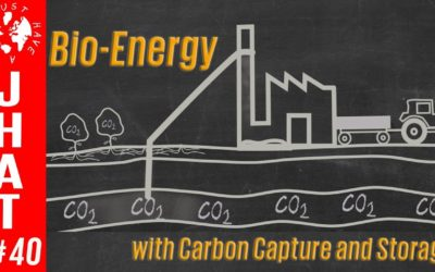 Bio-Energy with Carbon Capture and Storage (BECCS)