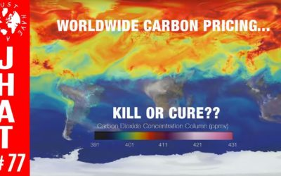 Carbon Pricing : Kill or Cure?