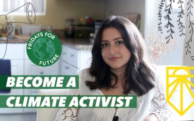 Climate activism for beginners