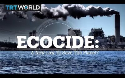 Do we need a new law to save the planet?