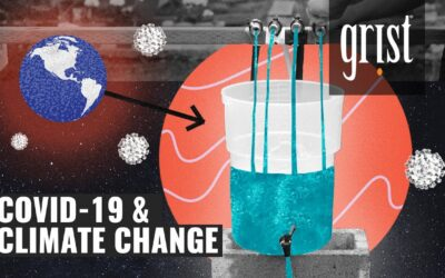 How coronavirus affects climate change (explained with a bucket)