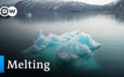 Melting ice – the future of the Arctic