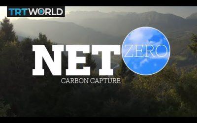 Californian Carbon-Negative Roadmap
