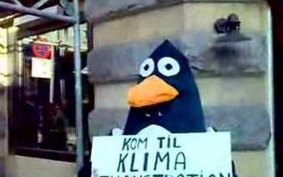 Pingvin indkalder til klimakamp