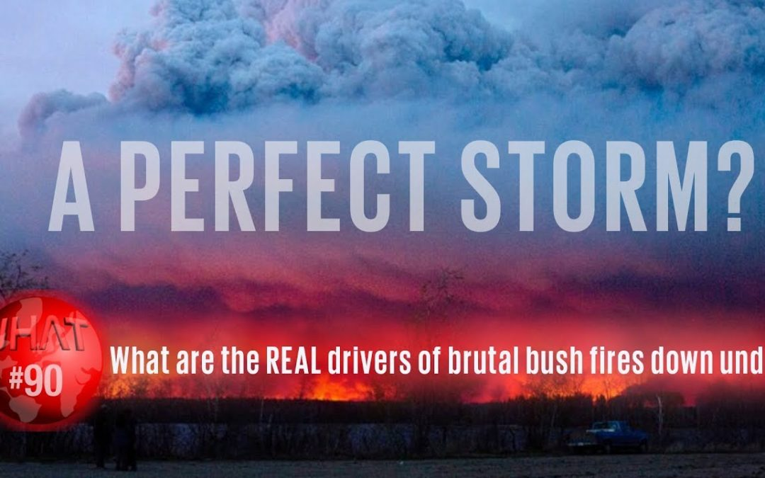 What's really driving the bush fires down under?